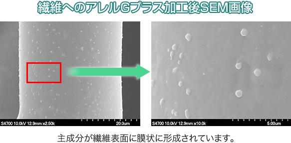 繊維へのアレルGプラス加工後SEM画像:主成分が繊維表面に膜状に形成されています。