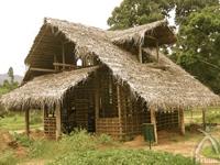 ココヤシの葉で作った屋根