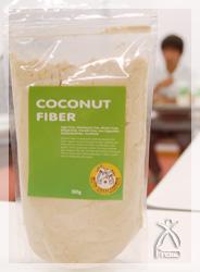 放射状に広がるココナッツの葉