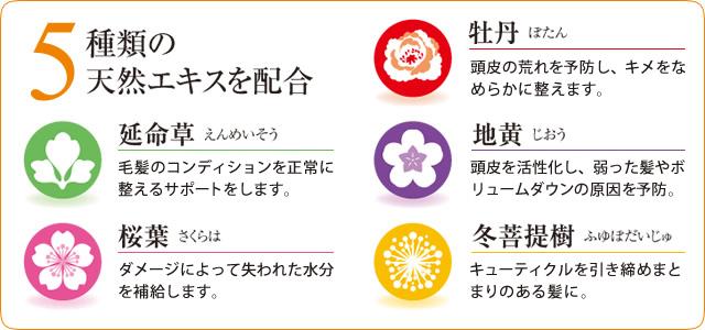 5種類の天然エキスを配合