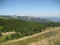 山頂の色の少し薄い部分がブルーベリー畑です。朝倉さんも向こう側の高い山まで登ったそうです。