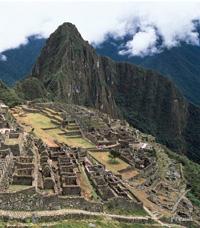 古代インカ帝国の時代から飲み継がれてきた「キャッツクロウ」