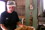 びわ種粉末:たくましく働く職人さん