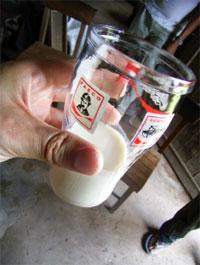 インカインチ・バージンオイル:豆乳