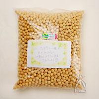 東島さんの大豆