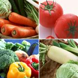 野菜の宇宙をひろげる
