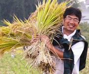 命を育む「羽鹿さんの黒米・玄米」