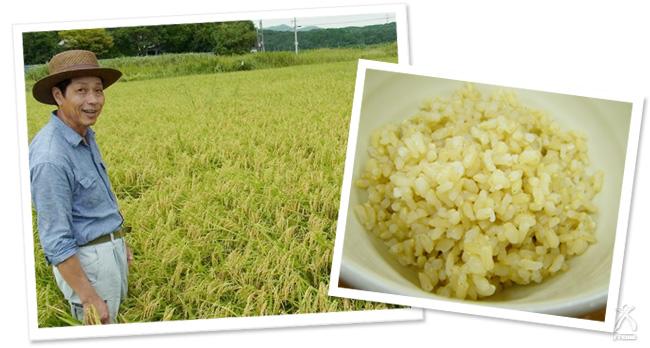 福岡県遠賀より 自然農法のお米 筋田さん作 遠賀のひかり