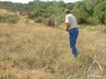 草の中を収穫