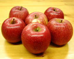 まっかなほんとのりんご