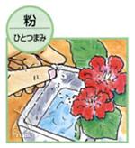 シリンゴル重曹:切花に