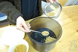 スプーンなどを使ってあんべんなく種をまく。