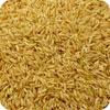 ウェナー:ブラウンライス (玄米)