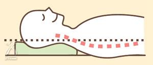 知恵ピロー・楽枕万能:枕の高さと首の角度がフィット