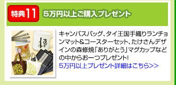 特典11:5万円以上ご購入プレゼント