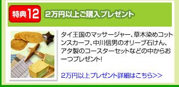 特典12:2万円以上ご購入プレゼント