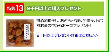 特典13:2千円以上ご購入プレゼント