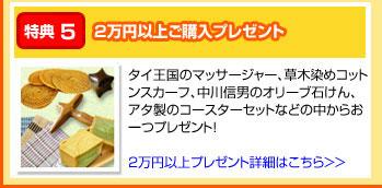 特典5:2万円以上ご購入プレゼント