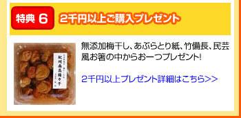 特典6:2千円以上ご購入プレゼント