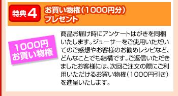 特典4:お買い物権(1000円分)プレゼント