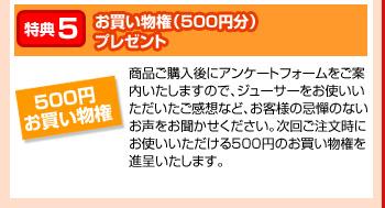 特典5:さらに!お買い物権(500円分)プレゼント