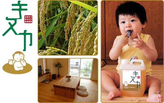 お米から生まれた100%自然塗料 キヌカ