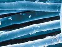 細かなほこりの粒子が繊維の表面に吸い寄せられた様子
