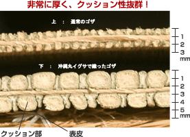 3 厚みが通常のものの約2 倍でクッション性抜群