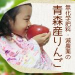 奈良県吉野名物 「柿の葉ずし」