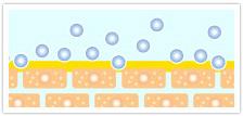 保湿力の高い膜でカバー