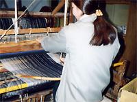 和紡布:綿畑