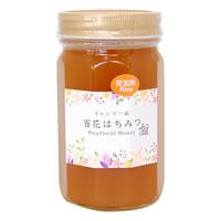 ミャンマー産 百花生はちみつ(非加熱)500g