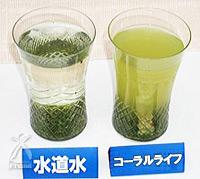コーラルライフ・サンゴベース:おいしい水出し茶が普通のお茶の葉でつくれます