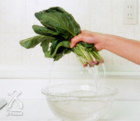 コーラルライフ・サンゴベース:野菜がパリっと