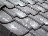 屋根にも酢酸菌がすみついて黒くなっています。