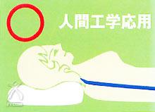 蘇生の森 枕:人間工学応用