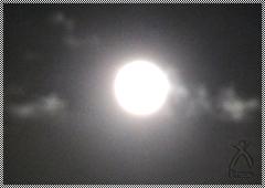 満月の光に見守られて