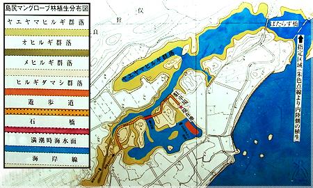 島尻マングローブ林地図