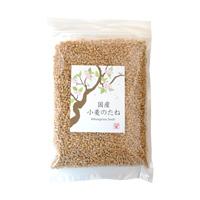 プレマシャンティ 国産 小麦のたね  300g