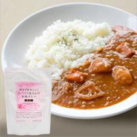 【26%OFF】プレマシャンティ 野菜が美味しい!スパイス屋さんの本格カレー(辛口)200g