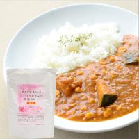 【20%OFF】プレマシャンティ 野菜が美味しい!スパイス屋さんの本格カレー(甘口)200g