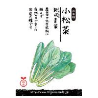 ナチュラルライフステーション 国産・自然農法種子 小松菜/新戒青菜 約580粒