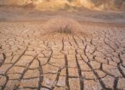 水資源と食糧問題