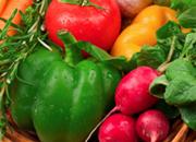 統合医療の核は菜食