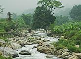 竹布:工場の横を流れる美しい川(この水を工場で使用します)